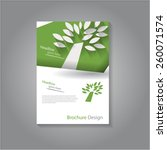 modern brochure   flyer design... | Shutterstock .eps vector #260071574