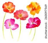 watercolor illustration ... | Shutterstock .eps vector #260097569