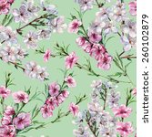 flowers peach and cherry ... | Shutterstock . vector #260102879