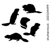 Beaver Set Of Silhouettes Vector