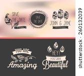 set of vintage stickers | Shutterstock .eps vector #260132039
