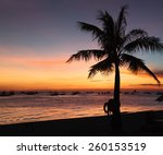 sunset on the beach with palm... | Shutterstock . vector #260153519