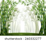 Bamboo Forest When It Full Of...
