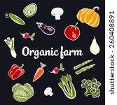organic farm vector concept   Shutterstock .eps vector #260408891
