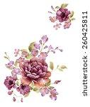 watercolor illustration bouquet ... | Shutterstock . vector #260425811