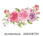 watercolor illustration bouquet ... | Shutterstock . vector #260428754