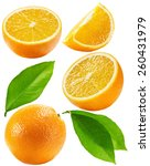 set of oranges isolated on the... | Shutterstock . vector #260431979