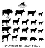 vector livestock silhouettes... | Shutterstock .eps vector #260454677