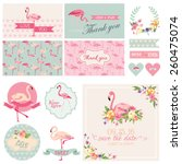 flamingo party set. for wedding ... | Shutterstock .eps vector #260475074