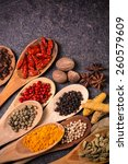 ingredients spices | Shutterstock . vector #260579609
