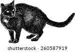 Stock vector black cat watching 260587919
