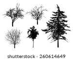 vector trees in silhouettes | Shutterstock .eps vector #260614649