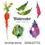 set of watercolor vegetables | Shutterstock .eps vector #260622731