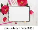 sketch book  flowers and color... | Shutterstock . vector #260628155