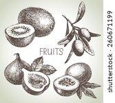 hand drawn sketch fruit set.... | Shutterstock .eps vector #260671199