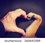 Stock photo background of a person and a dog making a heart shape with the hand and paw toned with a retro 260692589
