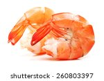 shrimps on a white background | Shutterstock . vector #260803397
