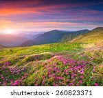 colorful summer sunrise in the... | Shutterstock . vector #260823371