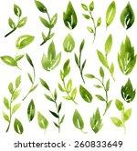 set of vector watercolor green... | Shutterstock .eps vector #260833649