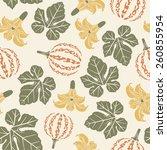 pumpkins on a white background... | Shutterstock .eps vector #260855954