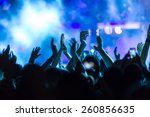 people taking  during a music... | Shutterstock . vector #260856635