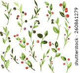 set of vector watercolor green... | Shutterstock .eps vector #260861279