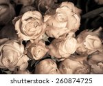 Vintage Roses Bouquet In Sepia