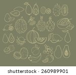 vector set of exotic fruits.... | Shutterstock .eps vector #260989901