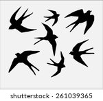 swallow bird silhouette  | Shutterstock .eps vector #261039365