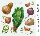 vector hand drawn recipe with... | Shutterstock .eps vector #261240131