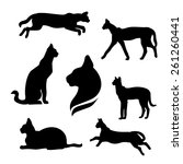 Serval Set Of Silhouettes Vector