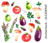watercolor vector vegetables... | Shutterstock .eps vector #261308969