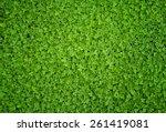 A  Greenish Cleaver Natural...