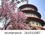 Sakura  Temple And Blue Sky For ...