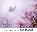 Stock photo beautiful butterfly and flowers 261556307