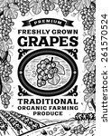 retro grapes poster black and... | Shutterstock . vector #261570524