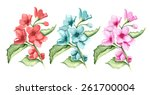 blossom branches. watercolor.... | Shutterstock .eps vector #261700004