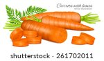 carrots with leaves and carrot... | Shutterstock .eps vector #261702011