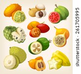 exotic tropical fruit. icons... | Shutterstock .eps vector #261705995