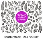 vector floral set. graphic... | Shutterstock .eps vector #261720689