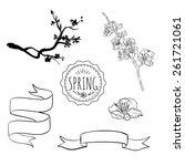 vector hand drawn spring... | Shutterstock .eps vector #261721061