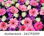 bunch of flowers | Shutterstock . vector #261792059