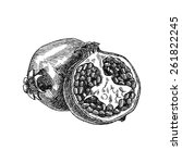 vector hand drawing pomegranate ... | Shutterstock .eps vector #261822245
