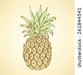 sketch tasty pineapple in... | Shutterstock .eps vector #261844541