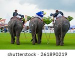 Kings Cup Elephant Polo 2014...