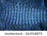 Close Up Crocodile Leather...
