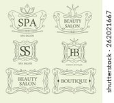 vector illustration. beauty... | Shutterstock .eps vector #262021667