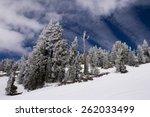 Winter Landscape After A...