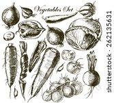 handmade work   set vegetables. ... | Shutterstock .eps vector #262135631