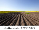 Plowed Agricultural Field....
